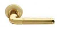 Дверные ручки RUCETTI RAP 2 SG/GP Матовое золото/золото