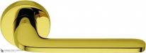 Дверная ручка на круглой розетке COLOMBO Roboquattro ID41RSB-OL полированная латунь